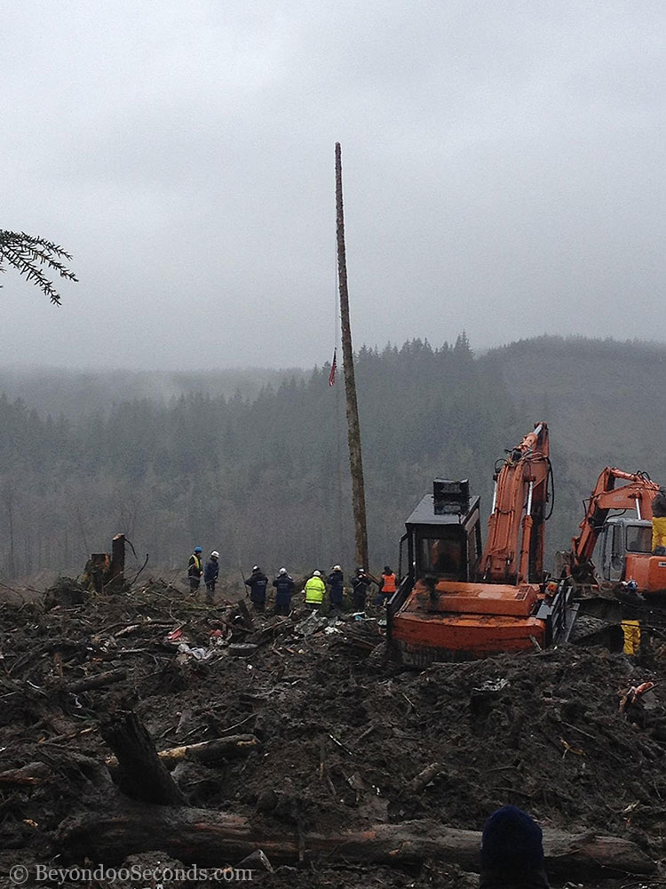 A flag on a lone tree during this moment of silence at the  Oso mudslide on Friday afternoon.